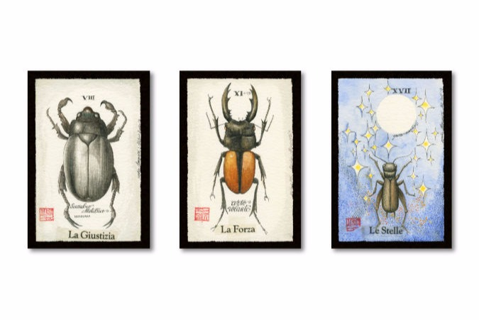 Insects Tarot